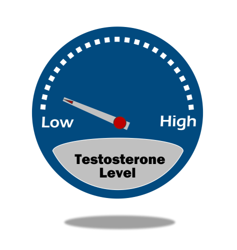 Testosterone Levels and CBD Oil